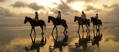 Bali Horse Riding Adventure on The Canggu Beach